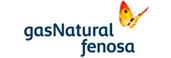 Logotipe of Fenosa